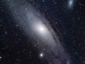 Cohunu Koala Park Space Observatory