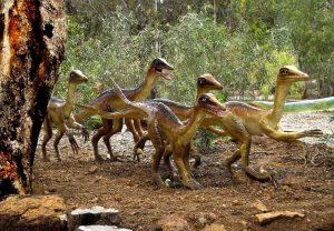 ds-raptors