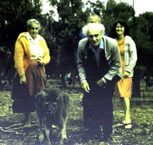 Julius Sumner Miller in Cohunu Koala Park-01